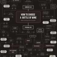 how-to-choose-wine-infographic