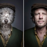 dogs dressed as humans