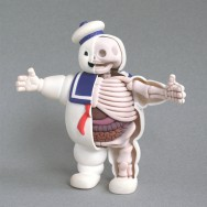 stay_puft_anatomy_sculpt_by_freeny-d2zue66